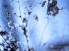 Etude d'ambiance en studioLumières à la prise de vueTEST-pocketWizard-5DMkII-flash CanonPhoto & retouche : Yves Goethals (c)