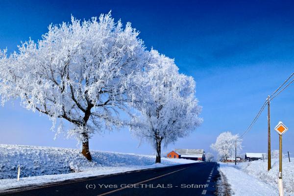 Neige-Février-2012 (-13-C)