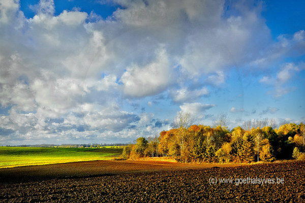 Automne2012-Ramillies-Campagne